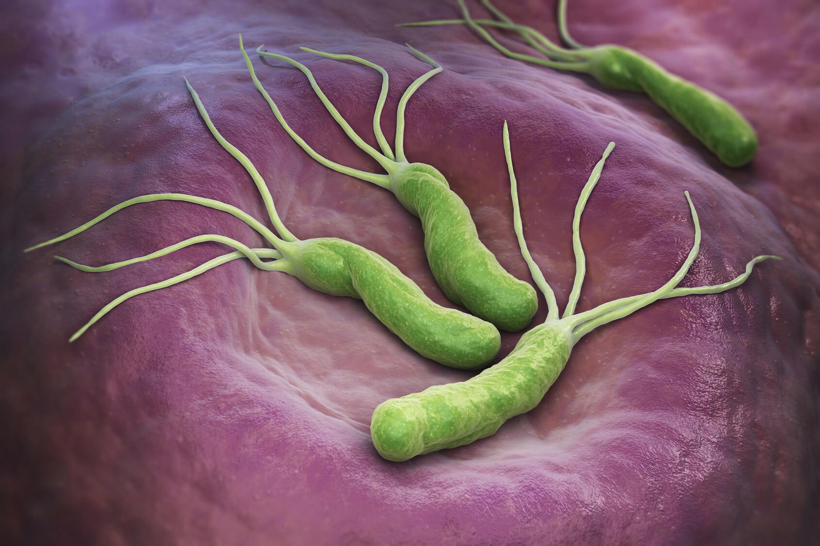 Testy na obecność bakterii